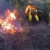 La Junta de Andalucía y el Ayuntamiento de El Ronquillo se reúnen con el objetivo de coordinar acciones conjuntas de prevención de incendios en la zona
