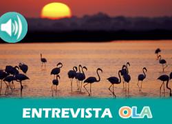 Ecologistas creen que la nueva planificación conjunta de Doñana blindará una protección que ya estaba recogida en las normas pero ahora sin ambigüedades
