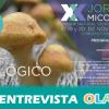 """Las """"Jornadas Micológicas del Parque Natural Sierra Norte de Sevilla"""" celebran su 20 aniversario con una programación especial que se extiende todo el mes de noviembre"""