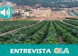 EQUO reclama que el III Plan de Producción Ecológica tenga como principal objetivo fomentar el consumo interno de este tipo de producción
