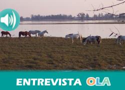 El dragado del río Guadalquivir, los proyectos de Gas Natural Fenosa y el regadío, las amenazas por las que Doñana podría dejar de ser Patrimonio de la Humanidad