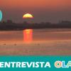 AMUPARNA pide el pago de subvenciones y apuesta por el trasvase como única solución al problema de agua en Doñana para hacer compatible el progreso y la sostenibilidad