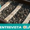 Nace la Plataforma en Defensa del Ferrocarril de Jaén para defender los intereses del tren y luchar contra el desmantelamiento ferroviario que sufre la provincia