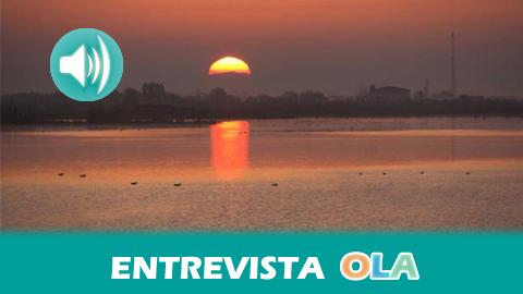Experto señala que el trasvase de aguas superficiales a Doñana solo será efectivo si antes se acaba con los usos ilegales y la contaminación por pesticidas y fertilizantes