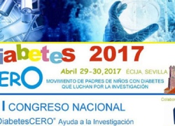 Écija acogerá el I Congreso Nacional de Ayuda a la Investigación de la Diabetes, un evento pionero en el que se conocerán los proyectos más innovadores sobre esta enfermedad