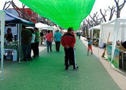 La Puebla de Cazalla celebra la II edición de su Mercado Ecológico en el que habrá desde agricultura y alimentación biológica hasta artesanía y moda sostenible