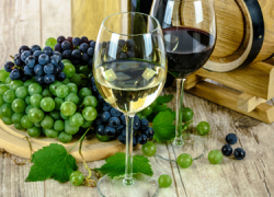 Los vinos producidos en Chiclana serán subvencionados durante la Feria de San Antonio en aquellas casetas que lleven a cabo su venta en exclusividad
