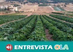 Los sindicatos del campo en Sevilla convocan cuatro días de huelga para denunciar que ASAJA mantiene bloqueado el convenio y su intención de reducir los salarios