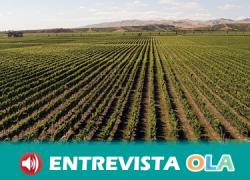 El modelo agroindustrial, basado en grandes multinacionales y especulación, está amenazando la agricultura tradicional y la vida en el mundo rural en Andalucía
