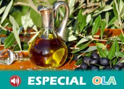 La Ruta del Oleoturismo de Martos comienza mañana con visitas para dar a conocer la cultura en torno al aceite de oliva