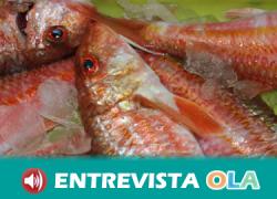 Administraciones, pescadores y ecologistas no se ponen de acuerdo para solucionar la grave situación de la pesca en el Mediterráneo