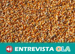 El municipio granadino de Órgiva acoge este fin de semana el Festival Hortofrutícola para mantener las variedades locales