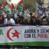 El Viso del Alcor lanza un proyecto de cooperación junto a la Asociación de Amistad con el Pueblo Saharaui de Sevilla