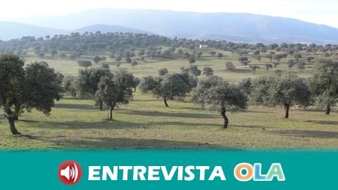 COAG-A asegura que es muy buena noticia para Andalucía que la UE considere las dehesas como pastos permanentes
