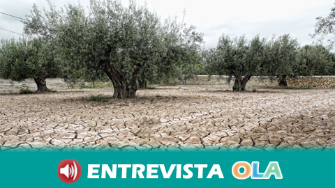 La sequía actual que padece Andalucía y España no viene dada solo por el descenso de lluvias sino por la ausencia de previsión y el derroche de agua