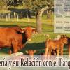 El Parque Natural Sierra de Hornachuelos pone en valor la ganadería y su importancia para el entorno