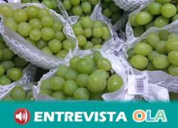 La bodega 'El Callejón' de Benalauría rescata variedades tradicionales de uva y apuesta por un turismo sostenible en la provincia malagueña