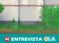 El proyecto 'Sombra que te quiero verde' del colegio sevillano San Isidoro inicia al alumnado en el mundo ecológico a través de un huerto escolar