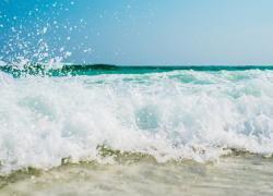 Torrox aprueba el Plan de Playas y acuerda la cesión de espacios educativos para las escuelas deportivas