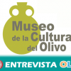 Una actividad de oleoturismo pone en valor la cultura e historia del olivar en el Museo de la Cultura del Olivo de Baeza