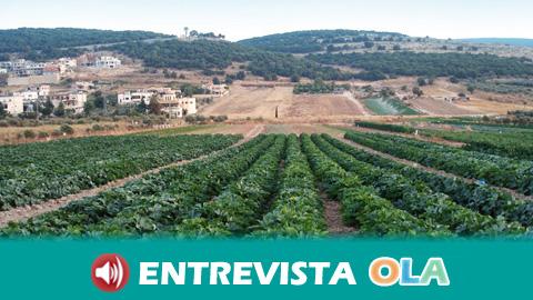 """Un estudio señala que los andaluces """"sobredimensionan"""" la importancia económica de agricultura en el sistema productivo andaluz"""