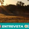 El Centro de Interpretación de la Dehesa de Villanueva de Córdoba pone en valor el ecosistema protagonista del Valle de Los Pedroches