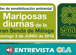 Un taller de mariposas diurnas pone en valor la riqueza medioambiental de la Gran Senda de Málaga