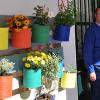 La comunidad educativa de Rute fomenta la sostenibilidad plantando un huerto vertical