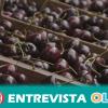 Las VIII Jornadas Gastronómicas de la Cereza Güejareña ponen en valor su producto local más importante, en esta ocasión, bajo una marca registrada