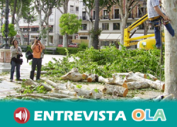 Un foro pide un análisis en profundidad de la gestión de las zonas verdes en las ciudades y reivindican la importancia del arbolado