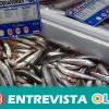 Recomendaciones para evitar la infección de anisakis en el pescado: congelar antes de consumir y cocinar bien