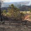 Estabilizado el incendio forestal de Nerva que ha afectado a más de 1.000 hectáreas