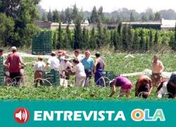 Las personas migrantes temporeras viven en chabolas sin alternativa habitacional en los campos de Andalucía