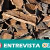 En 2019 Andalucía contará con tres nuevas escuelas de descorche para formar a los jóvenes de las zonas con tradición de corcho en oficios vinculados a ese sector