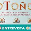 El programa 'Otoño de la Reserva de la Biosafera' organiza más de 50 acciones en los municipios de Sierra Morena