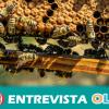 COAG-A se moviliza en defensa de la rentabilidad y sostenibilidad del sector apícola