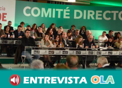 El PSOE de Andalucía está preparando 20 iniciativas legislativas con la defensa de los servicios públicos como eje central