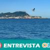 La Federación Antidroga de Cádiz reclama más inversiones en empleo y formación para luchar contra el narcotráfico en el Campo de Gibraltar