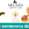 El proyecto Abeja Tierra nos enseña el mundo de la apicultura y su importancia medioambiental