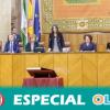 Vox amenaza el pacto de gobierno entre PP y Ciudadanos en Andalucía