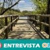 El desvío de aguas y el aumento de las necesidades agrícolas y turísticas han causado la degradación de los humedales de Doñana