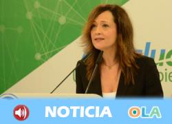 El Partido Popular Andaluz reclama al PSOE Andalucía una oposición constructiva y responsable, en beneficio de la ciudadanía andaluza