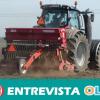 CCOO critica el incumplimiento de los empresarios y empresarias de la Ley de Prevención de Riesgos Laborales en el campo andaluz