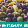 CCOO Sevilla señala que el seguimiento de la huelga en el sector del aderezo de aceituna ha sido masivo.
