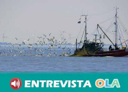 El sector de la pesca de la chirla del litoral Mediterráneo cumple ya las primeras 24 horas de parada biológica