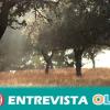 La dehesa andaluza genera importantes beneficios sociales como la fijación de la población al territorio rural