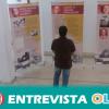 La exposición 'La Andalucía de Miguel Hernández' lleva a Córdoba la vida y obra del poeta alicantino