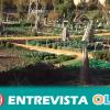 Los altos niveles de contaminación registrados en el huerto urbano de Miraflores de Sevilla son un caso puntual y no deben generar alarma