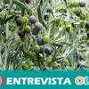 Asaja Sevilla organiza las XXVII Jornadas del Olivar para abordar la problemática de la baja rentabilidad del sector