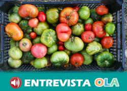 Las personas jubiladas, desempleadas y con rentas limitadas de Andújar tendrán a su disposición 41 huertos sociales